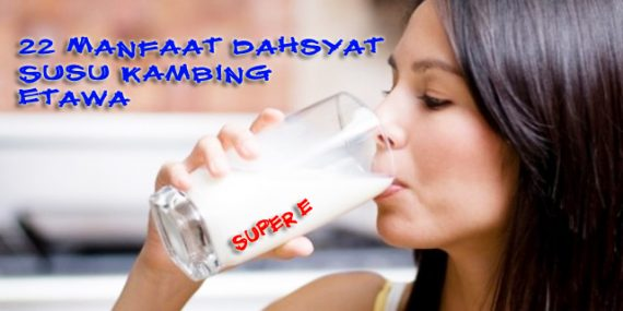 manfaat susu kambing etawa