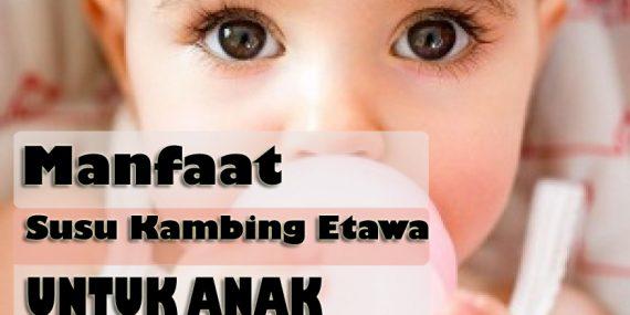 Susu Kambing Untuk Melancarkan BAB Anak